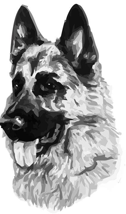 vector graphic dog security german shepherd