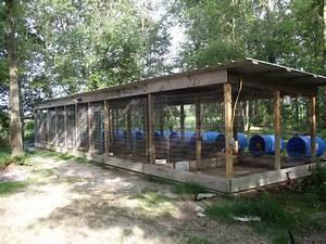 the real apbt dog kennel setups and designs With best dog kennel design