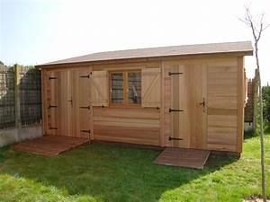 Abri de jardin en bois roquebrune 300mx550m cerisier for Awesome abri de jardin bois pas cher leroy merlin 4 abri de porte pas cher