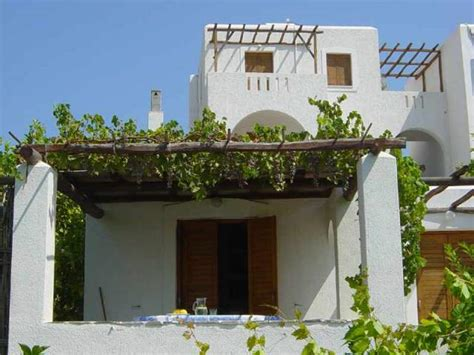 balcony garden idea the lovely plants