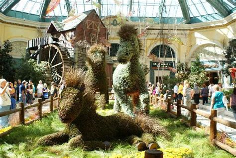 indoor flower garden picture of bellagio las vegas las