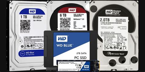 western digital color codes wd blue vs black vs purple hdd ssd differences