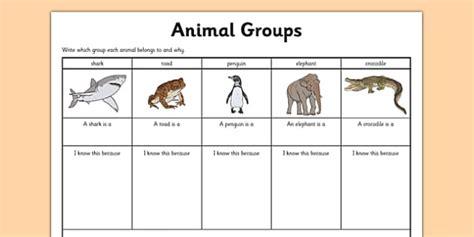 Animal Group Worksheet  Grouping Animals, Classifying Animals
