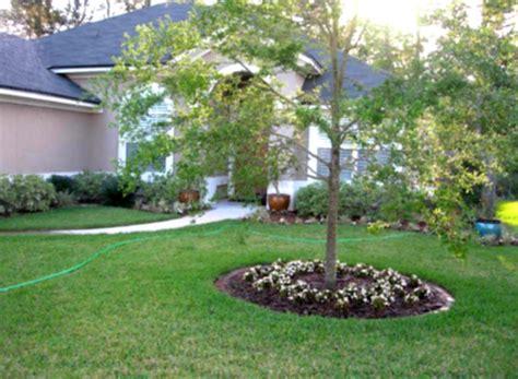 easy landscaping designs simple green landscaping designs for modern home backyard homelk com