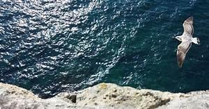 Frasi sul mare Scopri 30 belle frasi sul mare scritte da autori famosiGraphoMania
