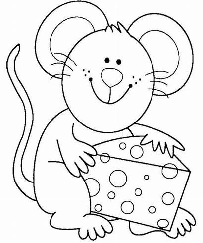 Coloring Mouse Cheese Colouring Adult Eat Nerf
