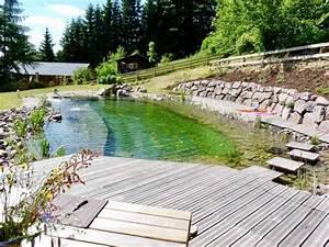 Construction Piscine Naturelle : piscine naturelle la piscine cologique sans entretien ~ Melissatoandfro.com Idées de Décoration