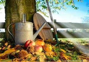 Garten Im September : gartentipps im september was kann jetzt geerntet werden garten hausxxl garten hausxxl ~ Whattoseeinmadrid.com Haus und Dekorationen