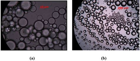 interfacial characterization  stability  emulsions