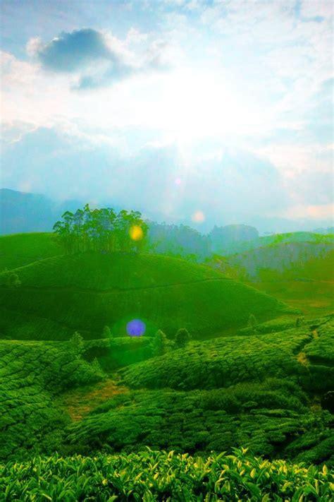beautiful green landscape wallpaper allwallpaperin