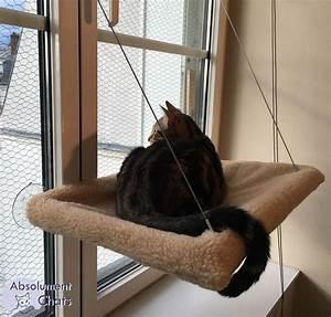 Accrocher Hamac Arbre : 1000 id es sur le th me hamac pour chat sur pinterest ~ Premium-room.com Idées de Décoration