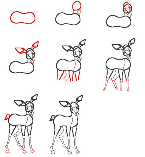 learn  draw  deer step  step drawing lesson