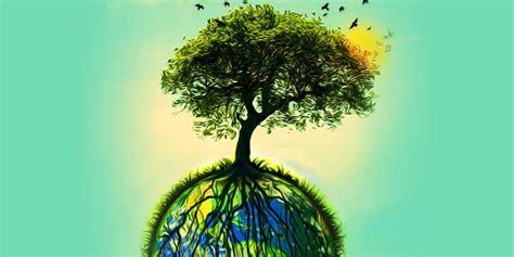 imagenes  concientizar sobre el  del medioambiente