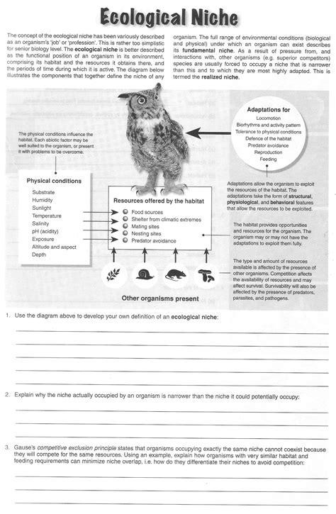 ecological niche worksheet