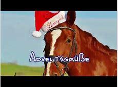 Adventsgrüße lustig mit Pferd Adventsgrüße YouTube