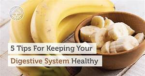 5 Tips For Keeping Your Digestive System Healthy