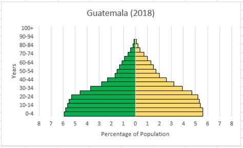 build  population pyramid  excel step  step