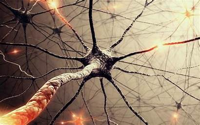 Neuron Wallpapers