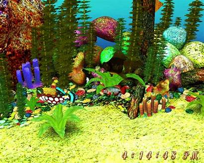 Screensaver 3d Aquarium Screensavers Microsoft Animated Desktop