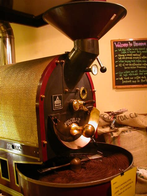 It's known as kopi luwak. slow roasted | the coffee roaster at uncommon grounds, cgurc… | Flickr