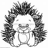 Coloring Porcupine Pages Animal Getcoloringpages sketch template