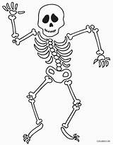 Skeleton Coloring Pages Printable Cool2bkids sketch template