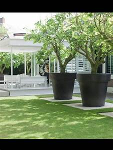 Planters: astounding large outdoor planters for trees ...