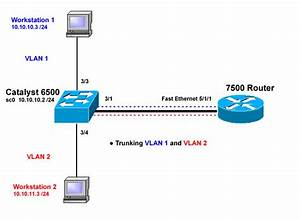 Configuring Isl And 802 1q Trunking Between A Catos Switch And An External Router  Intervlan