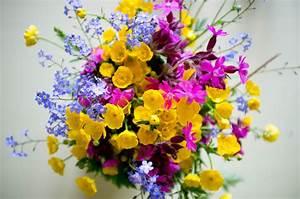 Bouquet De Printemps : le printemps les petits soleils godiche ~ Melissatoandfro.com Idées de Décoration