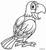 Parrot Coloring Pages Adults Printable Parrots Cockatiel Realistic Bird Cool2bkids Colouring Sheets Fish Getcolorings Adult Designlooter Getdrawings Results 78kb 750px sketch template