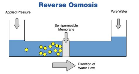 Buy Reverse Osmosis Water