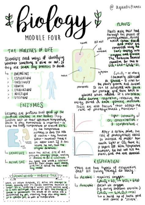 APUNTES BONITOS 30 Ideas originales y super sencillas