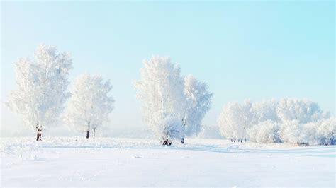 Winter Snow Pictures Wallpaper Wallpapersafari