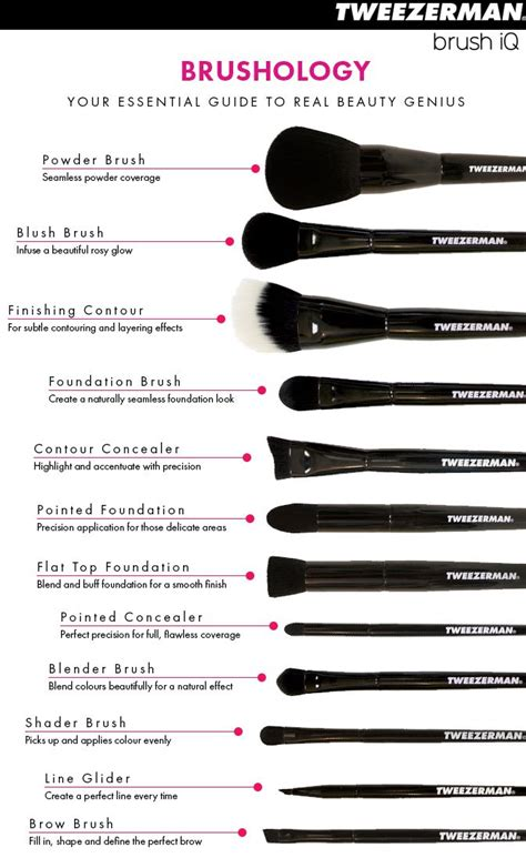 the best guide to makeup brushes and their uses b e a u t y m a k e u p eye makeup