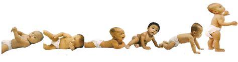 Janin 4 Bulan Hidup Gambar Bayi Sehat Gambarrrrrrr