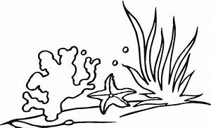 Seaweed Coloring Pages - Cliparts.co