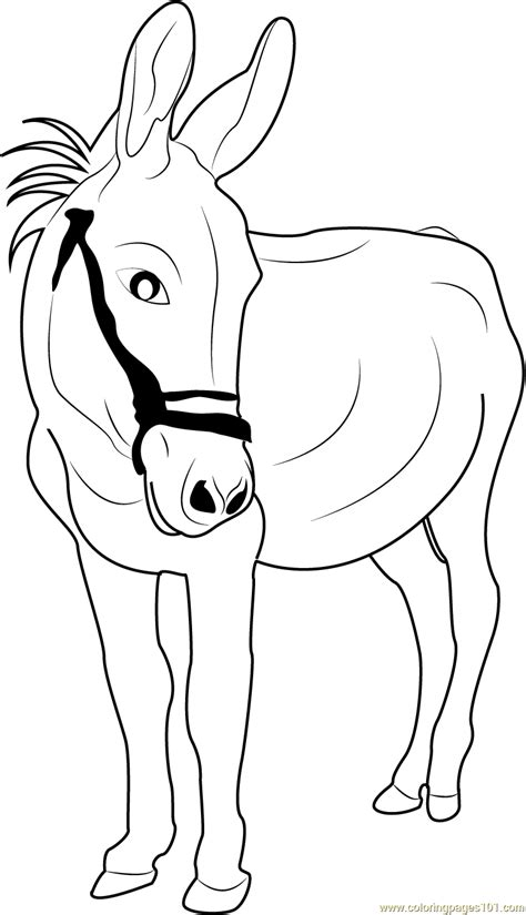 good  donkey coloring page  donkey coloring pages coloringpagescom