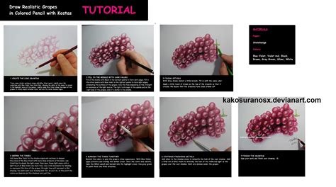 colored pencil drawing tutorial realistic grapes