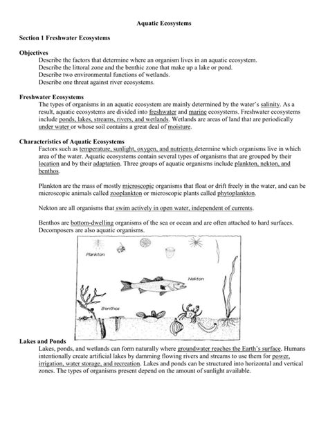 Water Ecosystems Worksheets Worksheets For All  Download And Share Worksheets  Free On