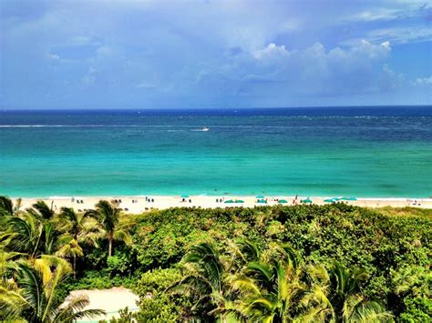 florida fishing saltwater palm beach fly destinations keys everglades fish sea havens season