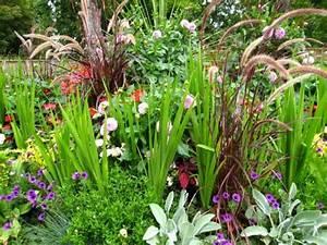 Plantes Amies Et Ennemies Au Potager : f vrier au jardin d 39 ornement ~ Melissatoandfro.com Idées de Décoration