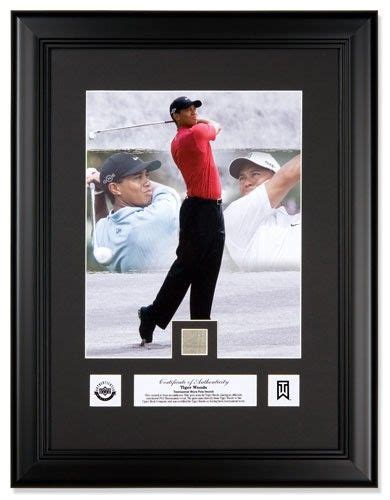 Perfect gift for the golfer in your life! Tiger Woods ...