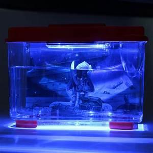 aquarium boite de nuit 28 images l aquarium frivole With carrelage adhesif salle de bain avec lampe de bureau led puissante