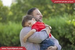 Toyor Al Janah : toyor al toyor al janah tv facebook ~ Medecine-chirurgie-esthetiques.com Avis de Voitures