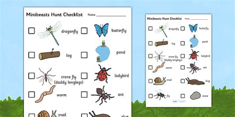 minibeast hunt checklist hunt checklist minibeasts insects