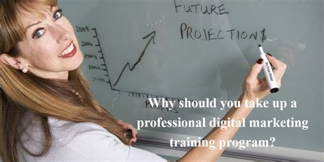 digital marketing professional program professional digital marketing program in gurgaon