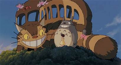Totoro Neighbor Miyazaki Ghibli Cat Bus Catbus