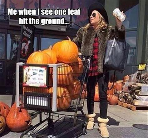 Fall Memes - best 25 fall memes ideas on pinterest gravity falls