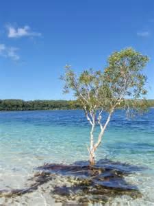 Lake Mackenzie Fraser Island Australia