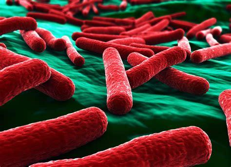 Antimicrobial Kills E. Coli Within 30 Seconds